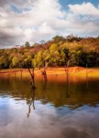 Thekkady Lake